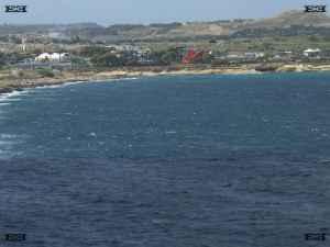 mediterraneo marine park swim with dolphins