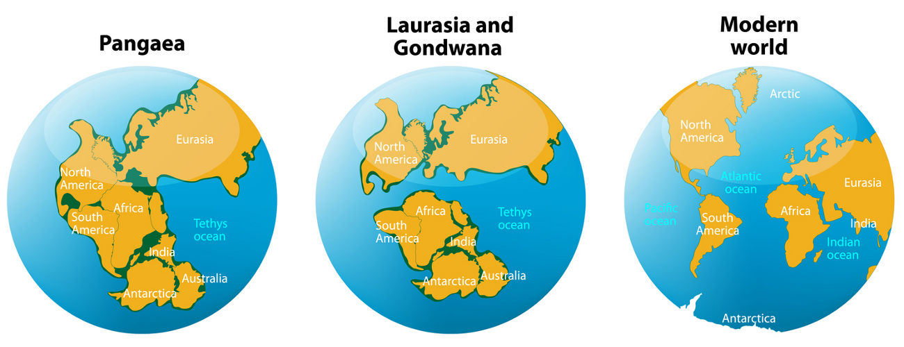 Supercontinents or smaller planet? Growing Earth theory