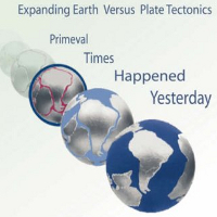 Mistake Earth Science: Expanding Earth Versus Plate Tectonics - Primeval Times Happened Yesterday Hans-Joachim Zillmer book