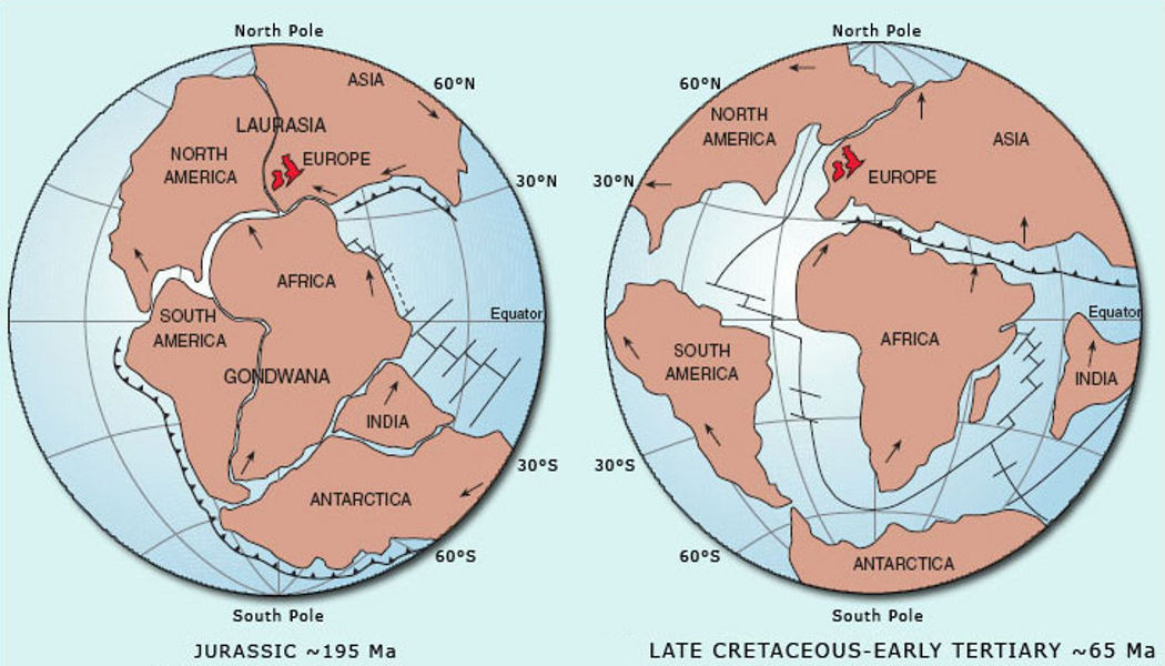 Smaller planet Earth evidence? Near perfect Pangaea on 80% size globe