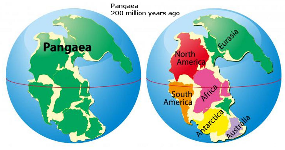 Smaller Planet Earth Evidence Near Perfect Pangaea On Size Globe - Pangaea map
