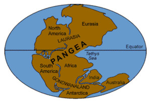 pangea 200 Million Years to the Present expanding earth books owen