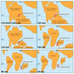 Gondwana Gondwanaland Indias plate tectonics continent
