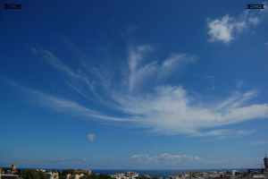 clouds in crab nebula cloud shape with legs or tendrils tendrils - photographs of these animal shaped clouds taken in malta above the sea water