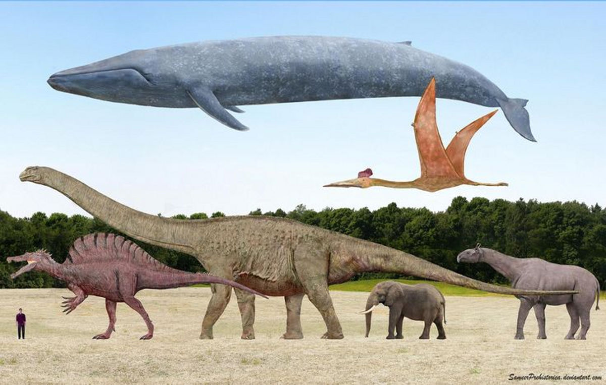Expanding Earth theory evidence Dinosaurs reduced gravity lower