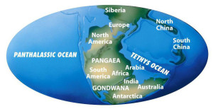 pangaea growing earth theory