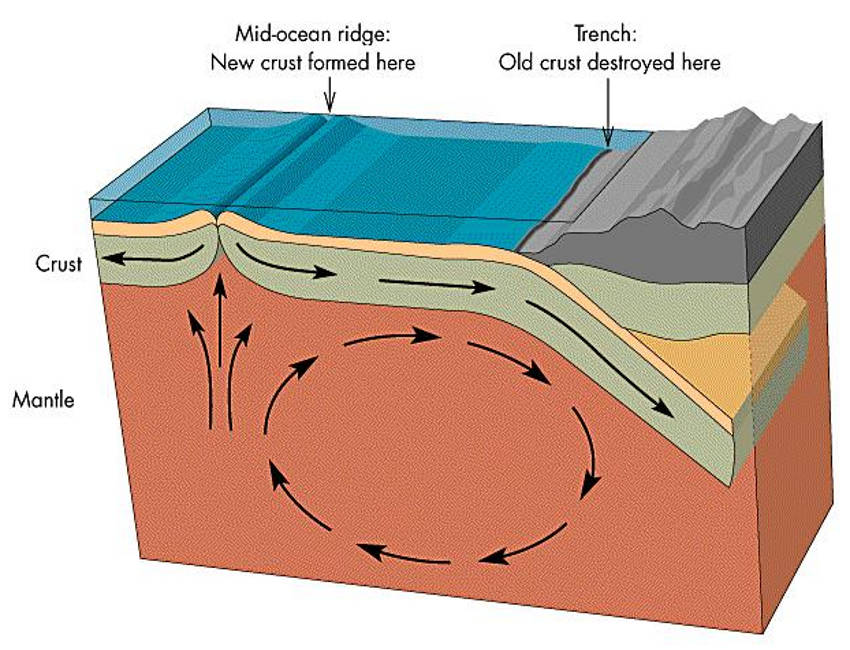 Plate Tectonic theories regurgitation